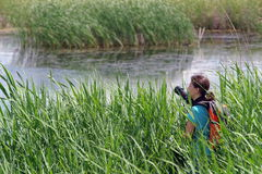 Young woman photographer in delta. Vacaresti Nature Park - landmark attraction in Bucharest, Romania Stock Photos