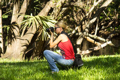 Young woman photographer in South Florida Park Royalty Free Stock Photo