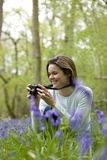 A young woman photographing bluebells, smiling Stock Photos