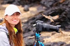 Young woman photographing on Santiago Island with Galapagos flycatcher on her lens hood, Galapagos National Park Stock Photography