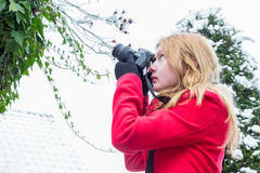 Young woman photographing snow on branches Stock Image