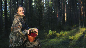 Young Woman Picking Cowberrys. Stock Image