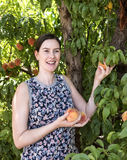 Young Woman Picking Fresh Peach from Tree. Royalty Free Stock Image