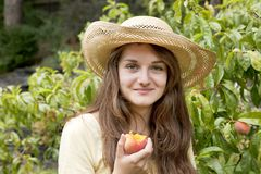 Young Woman Picking Peach Fruit Stock Photo