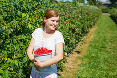 Young woman picking raspberries on pick a berry farm in Germany Stock Photos