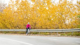 Young Woman in Pink Jacket Riding Road Bicycle on the Highway in the Cold Autumn Day. Healthy Lifestyle. stock images