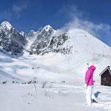 Young woman in pink ski jacket, gloves, hat looking at the top o stock image