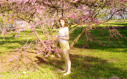 Young woman with pink tree Stock Image