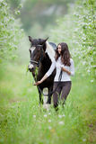 Young woman and pinto horse in apple garden. Stock Photography
