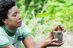 Young woman planting a flower in a bowl. Stock Photo