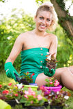 Young woman planting flowers. Smiling young woman planting flowers in the garden Royalty Free Stock Images