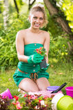 Young woman planting flowers Stock Photos