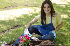 Young woman planting some flowers Stock Images