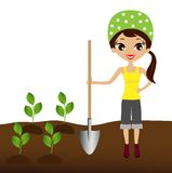 A young woman plants a nursery transplant in soil Royalty Free Stock Photo