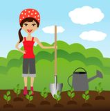 A young woman plants a nursery transplant in soil Stock Photography