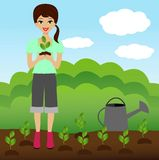A young woman plants a nursery transplant in soil Stock Images