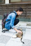 Young woman play with street cat Stock Images