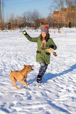 Young woman playing with American Pit Bull Terrier in winter Royalty Free Stock Photography
