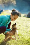Young woman playing with a cute little puppy on a green grass in the camping. Young woman is playing with a cute little puppy on a green grass in the campsite royalty free stock photos