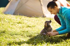 Young woman playing with a cute little puppy on a green grass in the camping. Young woman is playing with a cute little puppy on a green grass in the campsite stock photography