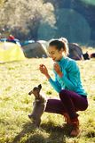 Young woman playing with a cute little puppy on a green grass in the camping. Young woman playing with a cute little puppy on a green grass in the campsite stock photo