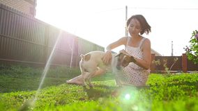 Concept of pets and outdoor recreation. Young woman playing with dog Jack Russell Terrier stock video footage