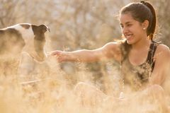 Young woman playing with dog stock image