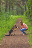 Young woman playing with German shepherd Stock Images