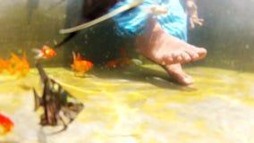 Young woman leg closeup shot, woman playing on gold fish in underwater shot. Young woman playing on gold fish in underwater closeup leg shot stock footage