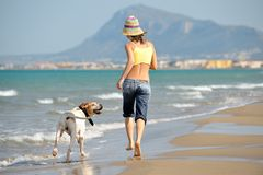 Young woman playing with her dog on the beach Stock Images