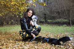 Young woman playing with her dogs  in an autumn park Stock Image