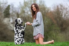 Young woman plays with an Dalmatian dog outdoors. Beautiful young woman plays with an Dalmatian dog outdoors Royalty Free Stock Image