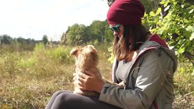 Young woman plays with small dog Griffon Bruxelloi stock video