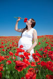Young woman plucks flowers Stock Photo