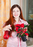 Young woman with Poinsettia flowers Stock Image
