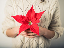Young woman with poinsettia Royalty Free Stock Photo