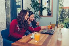 Young woman pointing on laptop computer watching and discussing video with friend in cafe royalty free stock photo