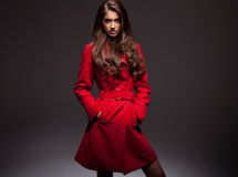 Young woman. Portrait of young woman in a red coat Stock Image