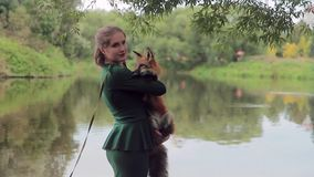 Young woman poses with red fox in park in her leisure. stock video