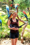 Young woman posing with exotic wildlife,Jungle Island,Miami,2014 Royalty Free Stock Image