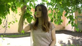 Young woman posing in a park near birch tree stock footage
