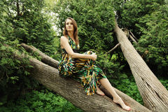 Young woman posing on a tree Royalty Free Stock Images