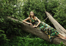Young woman posing on a tree Royalty Free Stock Photos