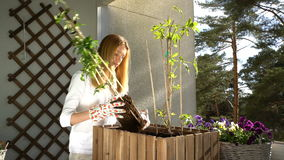 A young woman pours ground in the container and planting the seedlings on the balcony. stock footage
