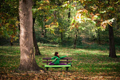 Young woman practice yoga on bench in the park Royalty Free Stock Images