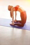 Young woman practicing yoga, doing Ushtrasana, Camel Pose Royalty Free Stock Photography