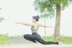 Young woman practicing yoga Everyday Yoga helps in concentration. Breath, shape body, strength, help skin brighten. Among the Dharma Air in bright days Royalty Free Stock Images