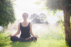 Young woman practicing yoga Everyday Yoga helps in concentration. Breath, shape body, strength, help skin brighten. Among the Dharma Air in bright days Royalty Free Stock Image