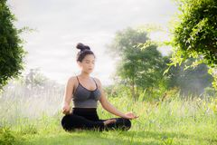 Young woman practicing yoga Everyday Yoga helps in concentration. Breath, shape body, strength, help skin brighten. Among the Dharma Air in bright days Stock Images