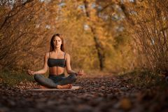 Young woman practicing yoga exercise at autumn park with yellow leaves. Sports and recreation lifestyle stock images